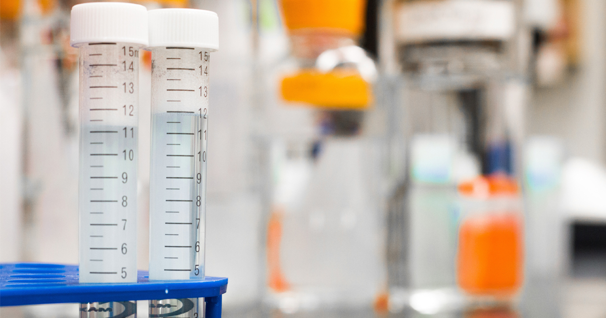 Read more about the article When to Use the Most Effective Methods of Drug Testing in Company Policies